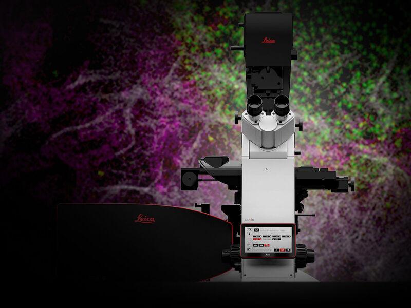 Stellaris Sted Microscope