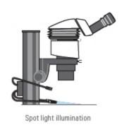 Gooseneck Illumination