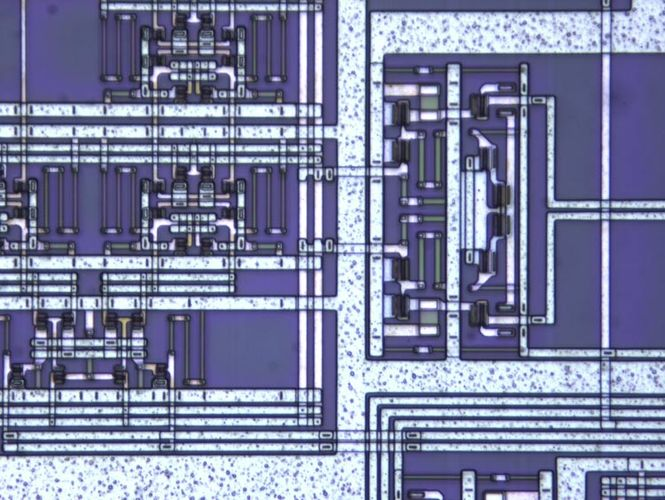 Csm Optical High Performer Dc9f72e65b
